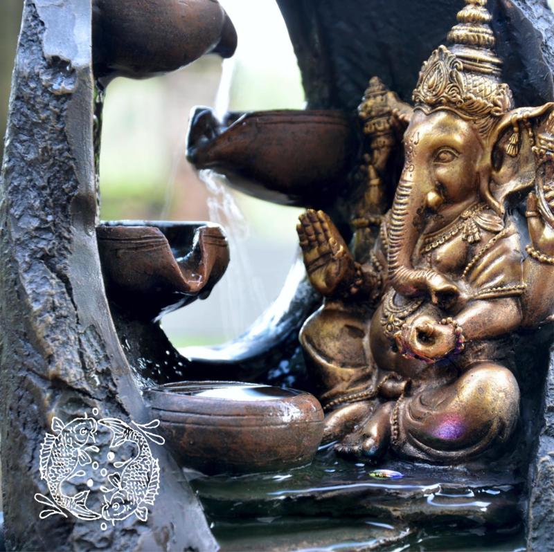 Kamerfontein Indian Dream (Voorspoed en Harmonie)2